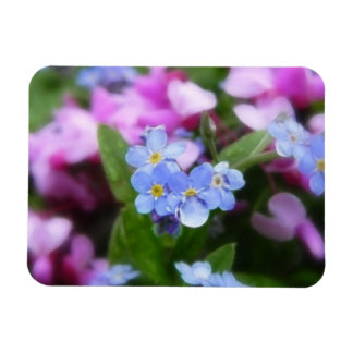 Spring Flowers - Forget Me Nots And Redbuds Rectangular Photo Magnet