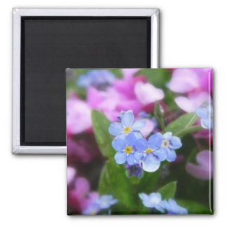 Spring Flowers - Forget Me Nots And Redbuds Square Magnet