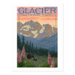 Spring Flowers - Glacier National Park, MT Postcard