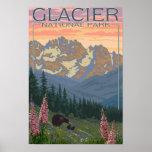 Spring Flowers - Glacier National Park, MT Poster