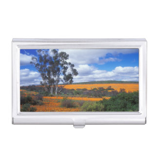 Spring flowers in Namaqualand, South Africa Business Card Holder