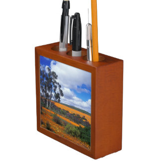Spring flowers in Namaqualand, South Africa Desk Organiser