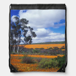 Spring flowers in Namaqualand, South Africa Drawstring Bag