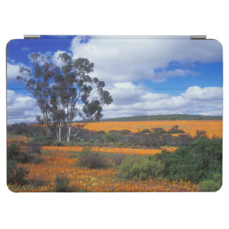 Spring flowers in Namaqualand, South Africa iPad Air Cover