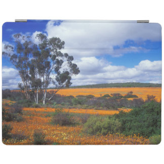 Spring flowers in Namaqualand, South Africa iPad Cover