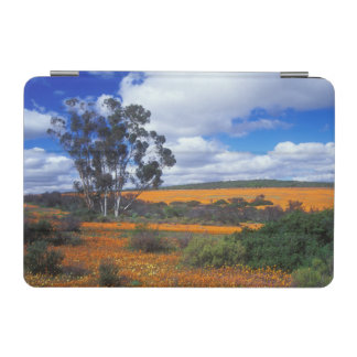 Spring flowers in Namaqualand, South Africa iPad Mini Cover