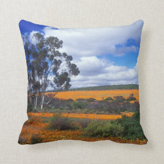 Spring flowers in Namaqualand, South Africa Throw Pillow