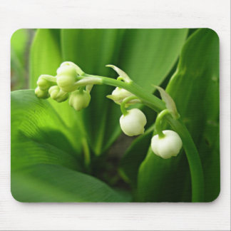 spring flowers - lily of the valley mouse pad