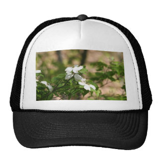 spring flowers mesh hats