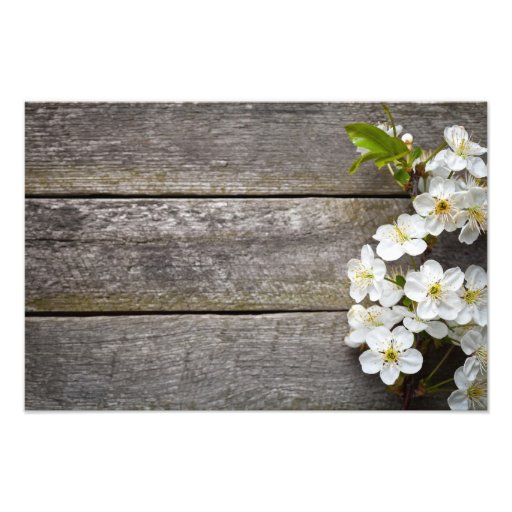 Spring Flowers On Wood Background Photo