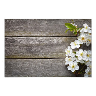 Spring Flowers On Wood Background Photo Print