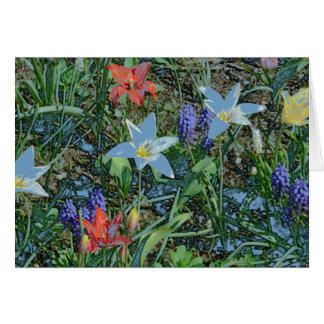 """SPRING FLOWERS"" (PHOTOG. DIGITAL MANIP.) GREETING CARD"