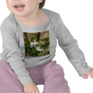 spring flowers t shirts