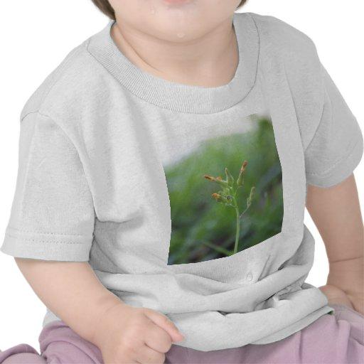 Spring Flowers T Shirt