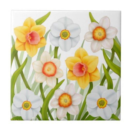 Spring Garden Daffodil Flowers Tile