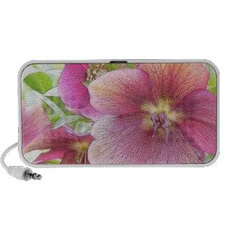 Spring Garden - Hellebore Flowers Mp3 Speakers