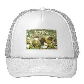 Spring Gosling Cap