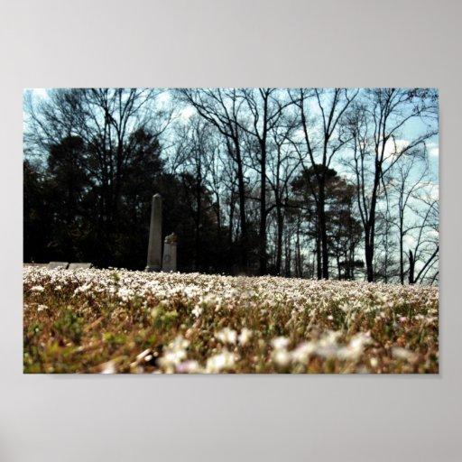 Spring Graveyard Poster