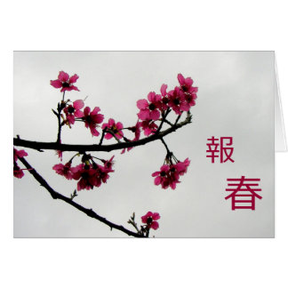 Spring Greetings/Cherry Blossoms Kanji Note Card