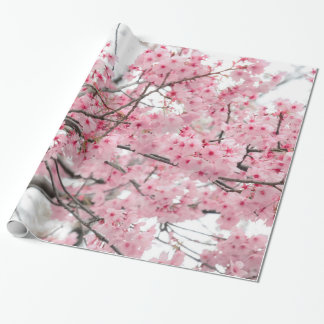 Spring Hanami Festival, Cherry Blossoms Wrapping Paper