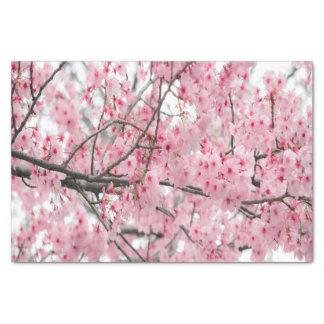 Spring Hanami Festival tissue paper