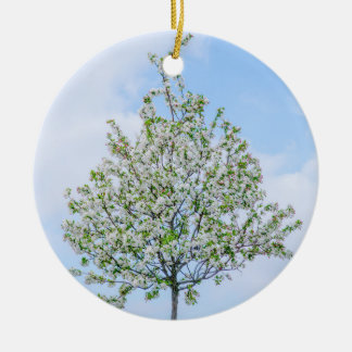 Spring - Happy Easter Christmas Ornament