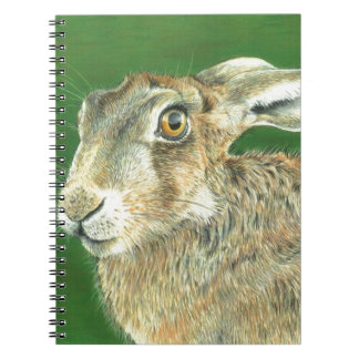 Spring Hare Notebook