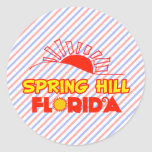 Spring Hill, Florida Classic Round Sticker