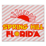 Spring Hill, Florida Posters