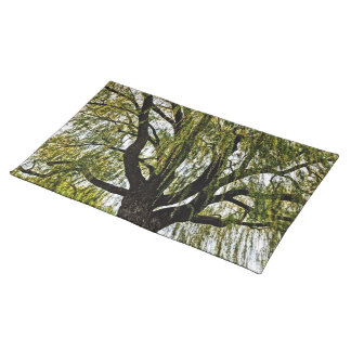 spring hopes muted place mat