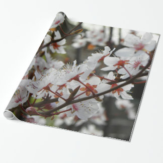 Spring in Canberra Wrapping Paper