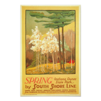 Spring in Indiana Dunes State Park Poster