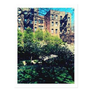 Spring in Inwood Postcard