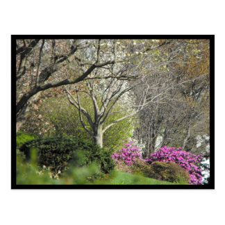 ~ Spring in Lancaster County ~ 17 Postcard
