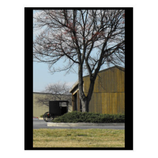 ~ Spring in Lancaster County ~ 96 Postcard