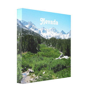 Spring in Nevada Gallery Wrapped Canvas
