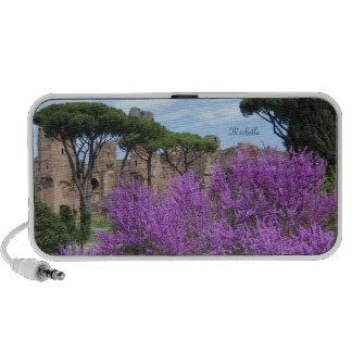Spring in Rome iPhone Speaker