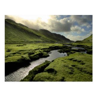Spring in Scottish Highlands Postcard