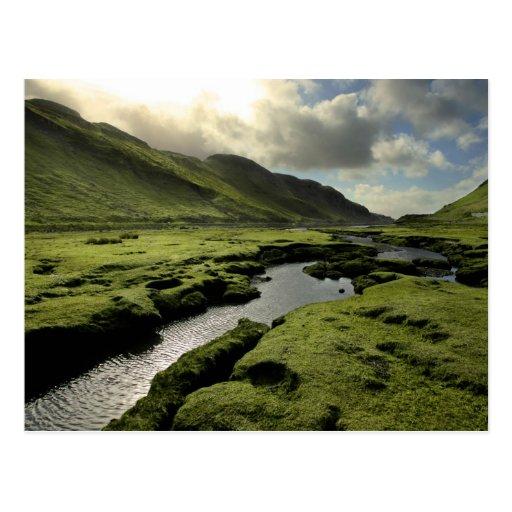Spring in Scottish Highlands Post Cards