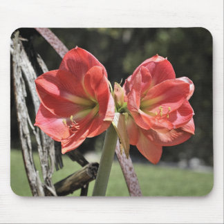 Spring is here mousepads