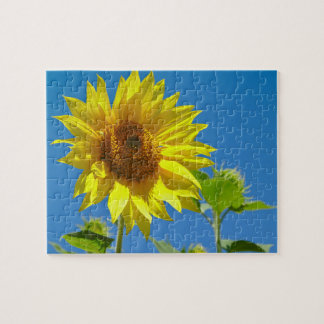 Spring is here! - Springtime sunflowers Jigsaw Puzzle