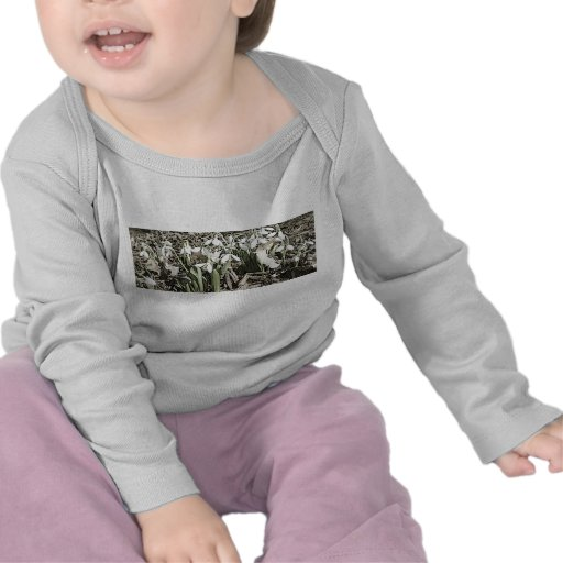 Spring is here t shirt