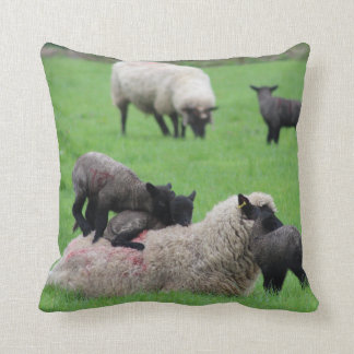 Spring Lamb and Sheep Cushion