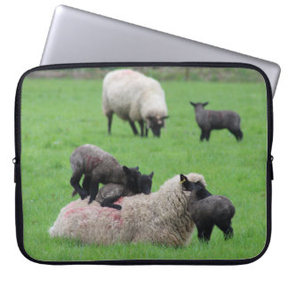 Spring Lamb and Sheep Laptop Sleeve