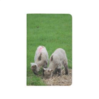 Spring Lambs Journal