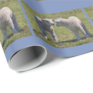 Spring Lambs Wrapping Paper