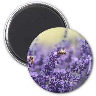 Spring Lavender with Bees Purple Floral Magnet
