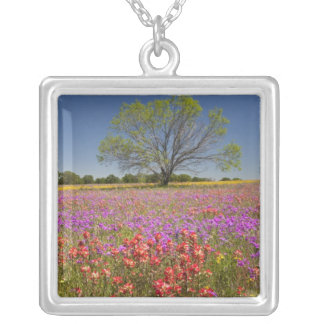 Spring mesquite trees growing in wildflowers, silver plated necklace