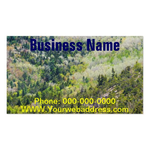 Spring On Cadillac Mountain Acadia National Park Business Card
