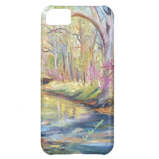 Spring on Gans Creek Case For iPhone 5C